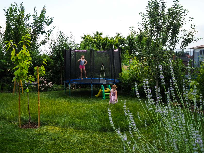 "Familiengarten für ""Faule""_naturnaher Garten"