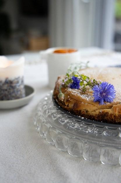 Ziegenfrischkäse Cheesecake