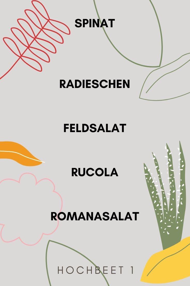 Bepflanzungsplan Hochbeet 1