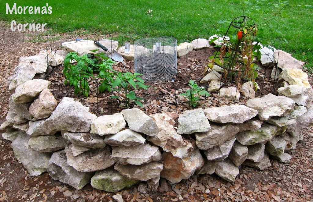 a garden design that is drought resistant and incorporates recycling yes please the second i read about keyhole gardens i knew i wanted to make one