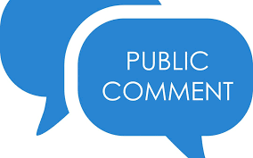 """Two blue text bubbles; the one on the right states, """"Public Comment."""""""