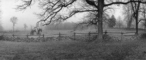 stone_fence