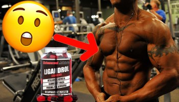 First SARMs Cycle – Key Fundamental Concepts & Basic Do's