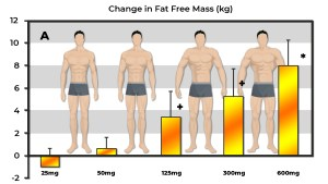 Muscular physiques increasing fat-free mass in a dose dependent manner with high dose Testosterone