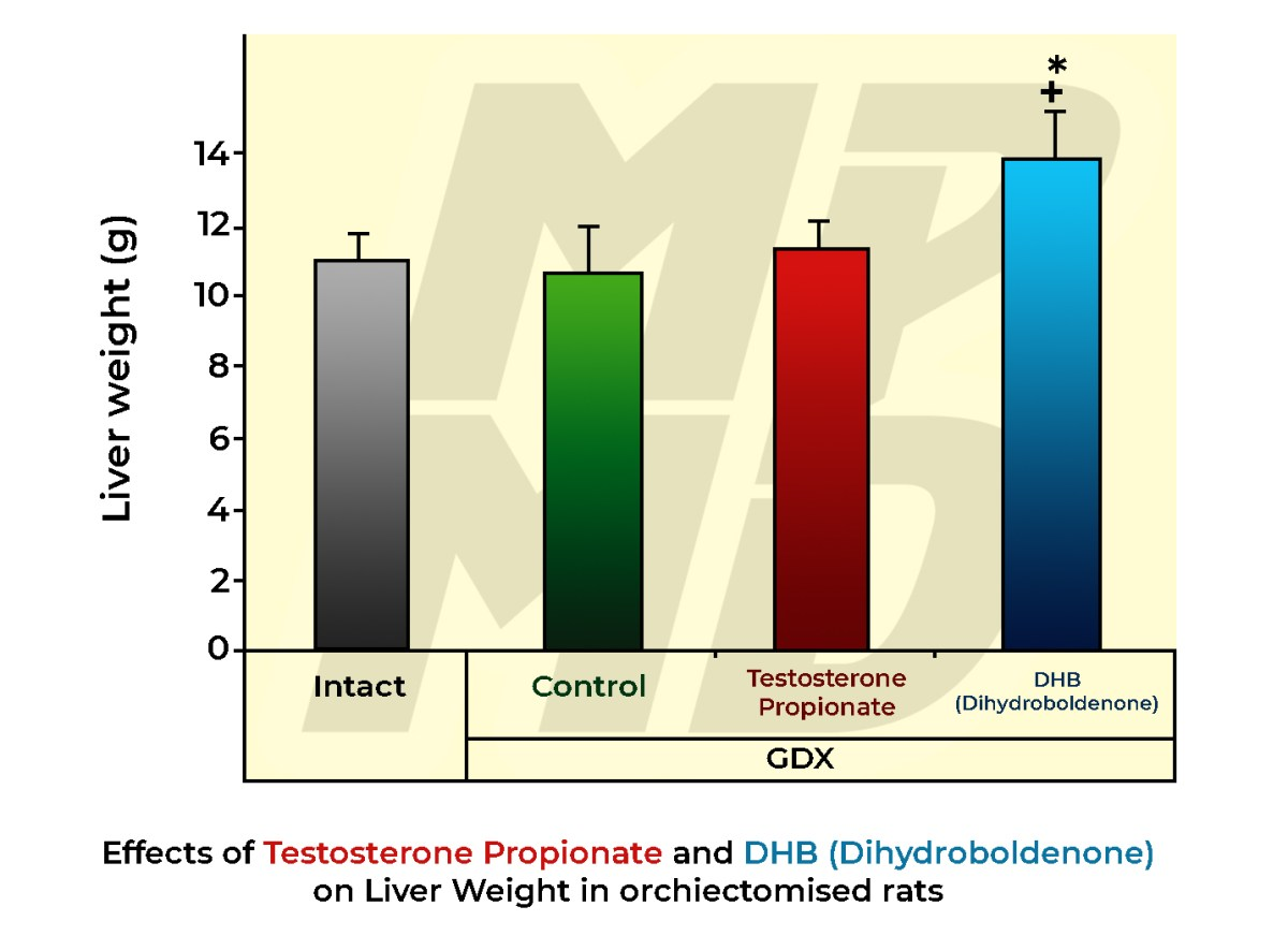 Effects Of Testosterone Propionate and DHB (Dihydroboldenone) on Liver Weight in orchiectomised rats
