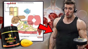 A picture depicting how L-Citrulline, Gorilla Mode and Cialis Work To Increase Nitric Oxide, Vasodilation and Make You More Vascular