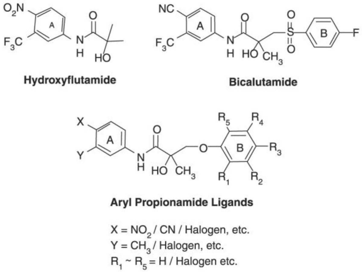 Chemical structures of hydroxyflutamide, bicalutamide, aryl proprionamide ligands.