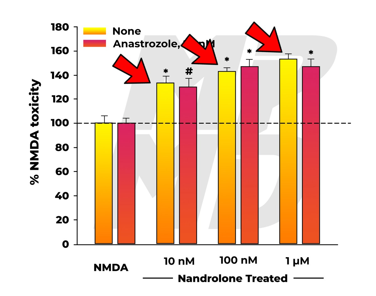 NMDA Neurotoxicity In Nandrolone (19-nortestosterone) Treated Group Co-Administered Nothing, Or The Aromatase Inhibitor Arimidex (Anastrozole) - Neurotoxicity With And Without Arimidex Pointed Out