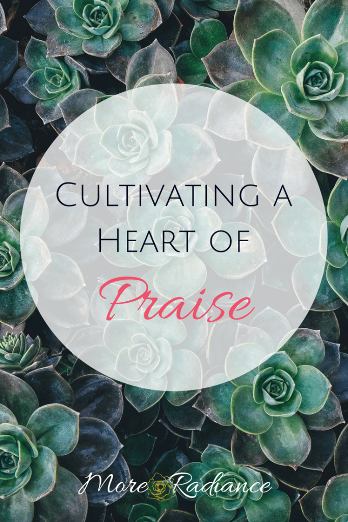 Cultivating a Heart of Praise