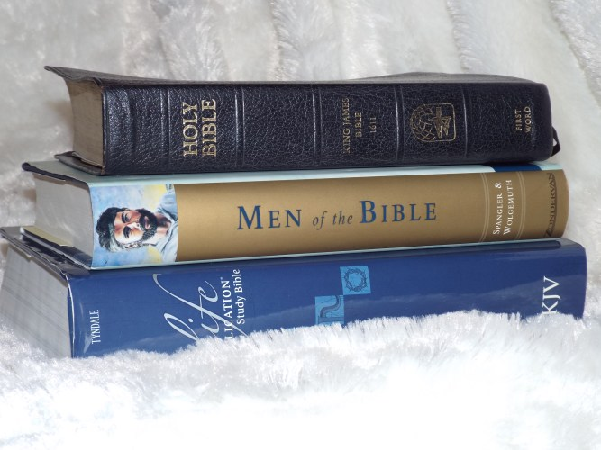 How to Study the Books of Samuel: 5 Tips to get the most out of your Bible study!