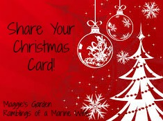 Share Your Christmas Card and Link Up!