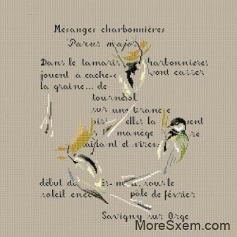 Стихи и птички