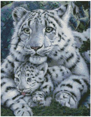 Белый тигр и тигрёнок