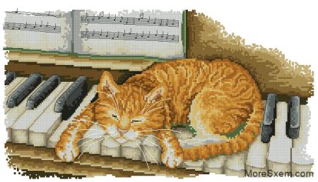 Котик на пианино
