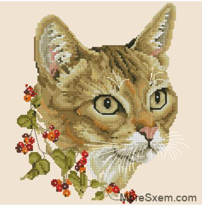 Времена года. Осенний кот