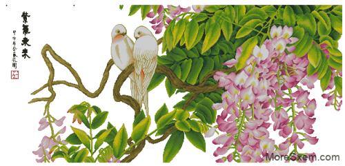 Розовая глициния и птицы