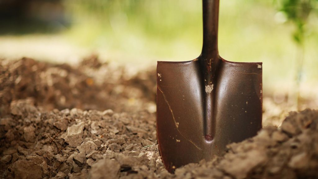 Digging out: Finding Eternity in Your Heart