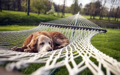 The Myth of Earning Your Rest Pt 1