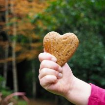 Speculaas biscuit recipe for kids from More Than Just Carrots