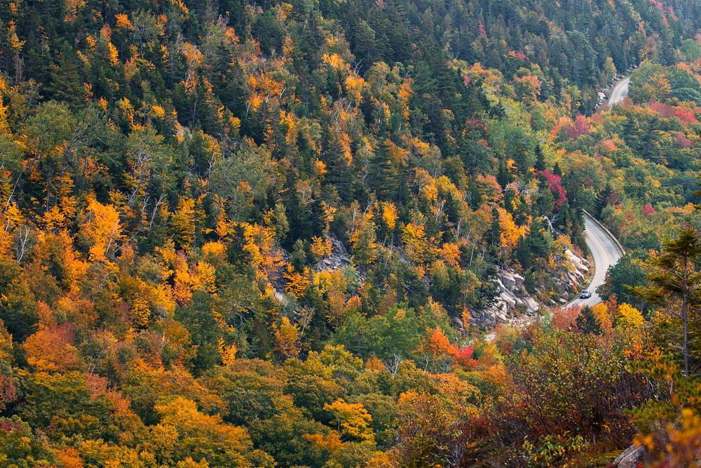 acadia national park maine fall road