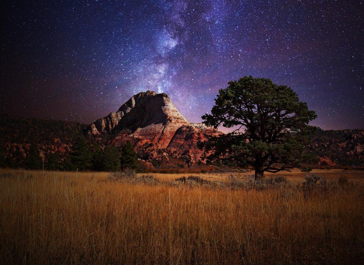 zion national park stargazing