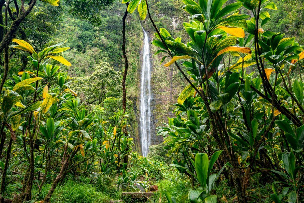 waimoku falls, haleakala national park waterfall