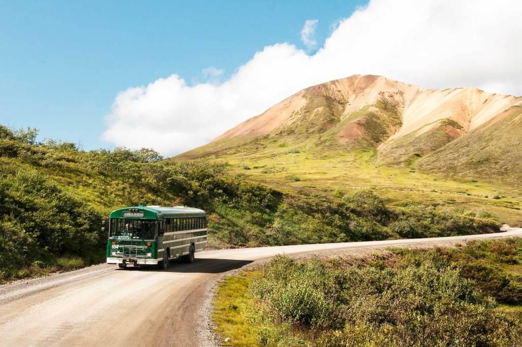 denali national park alaska bus tour