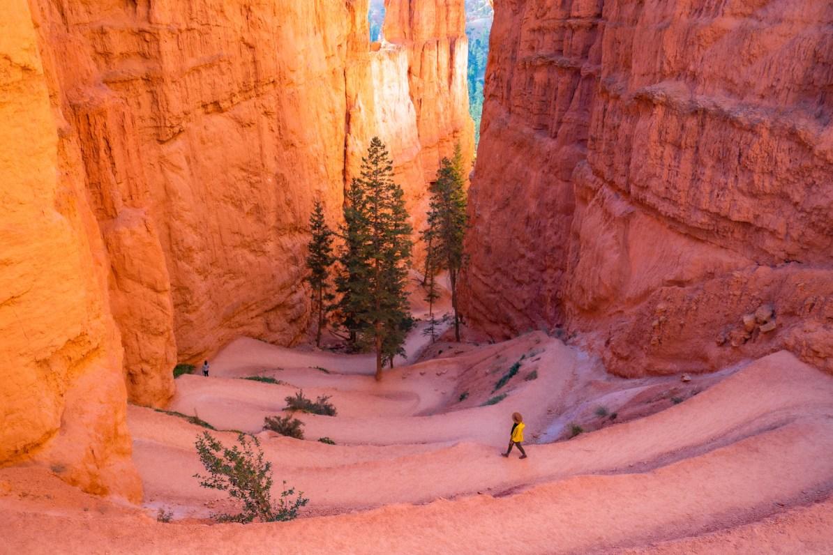 wall street trail bryce canyon national park utah