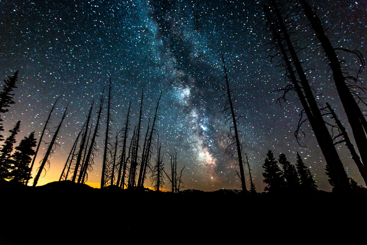 deer park stars olympic national park washington