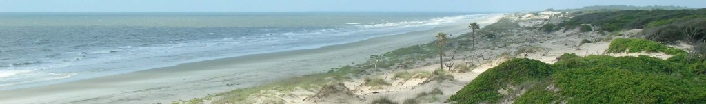 America's Greenest President lent his support, as governor, to the creation of the Cumberland Island National Seashore.