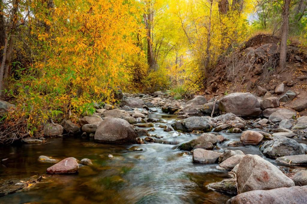 creek fishlake national forest utah
