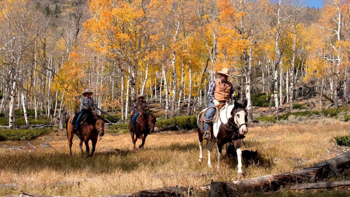 fishlake national forest utah horseback riding