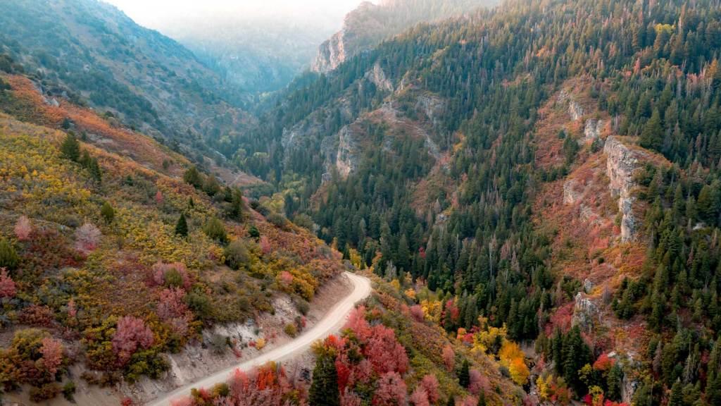 fishlake national forest utah