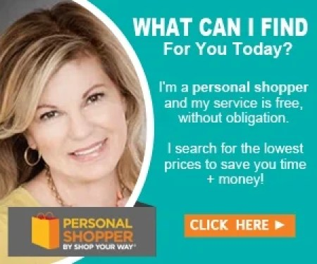 hire a personal shopper for free, what a personal shopper can do for you, Shop Your Way personal shopper, Personal Shopper Pro