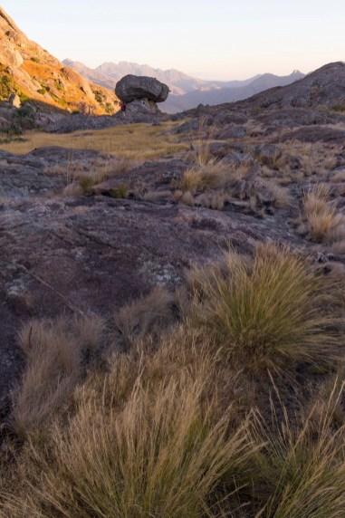 Fin de journée au bord du parc national de l'Andringitra entre herbes et roche