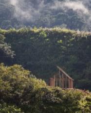 Le bois de la forêt primaire sert en autre pour la construction des maisons des populations locales