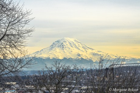 Downtown Tacoma: View of Mount Rainier
