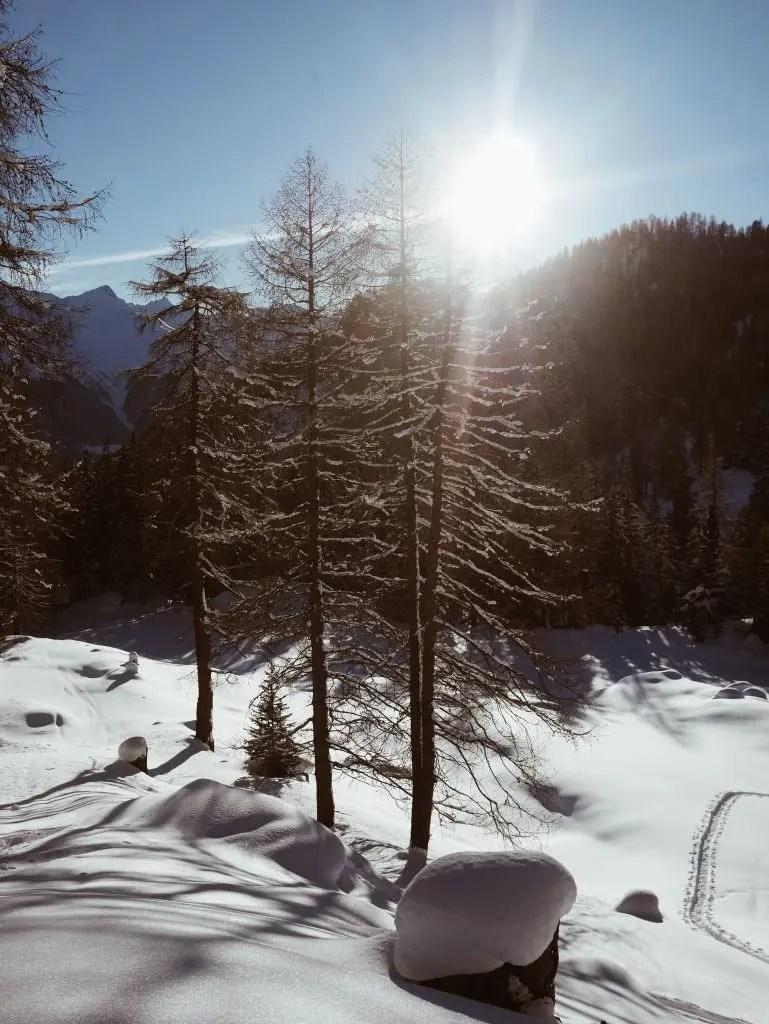 Engadine Grisons Suisse
