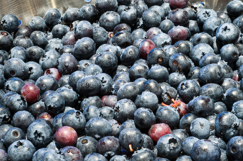 blueberrylast