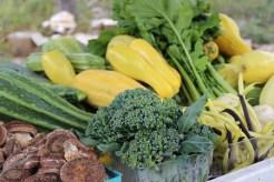 vegetable csa share