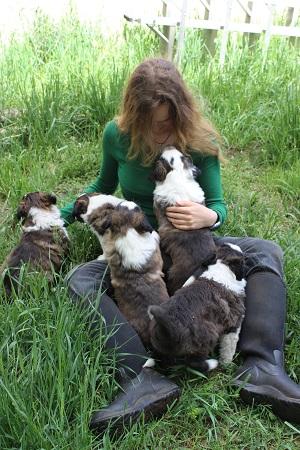 puppies 034 smaller