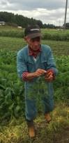 Saito-san explaining how he cultivates carrots