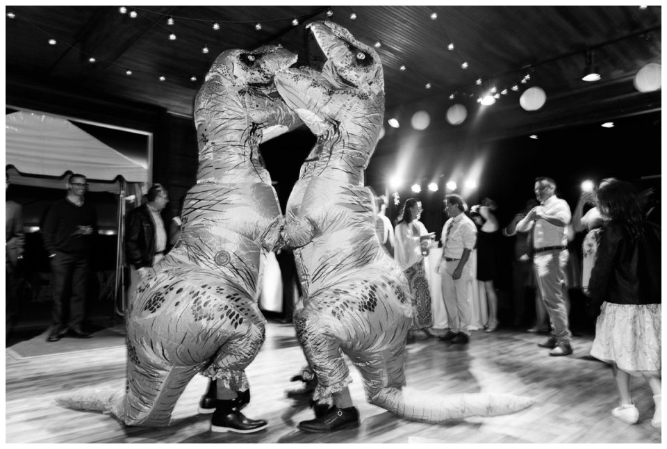 trex wedding costume dinosaur themed wedding