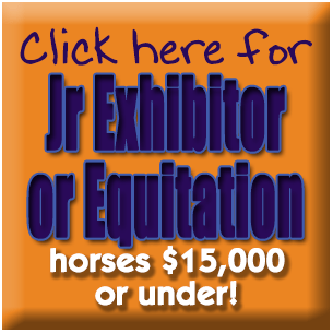 Jr Exhibitor or Equitation Horses Under $15,000