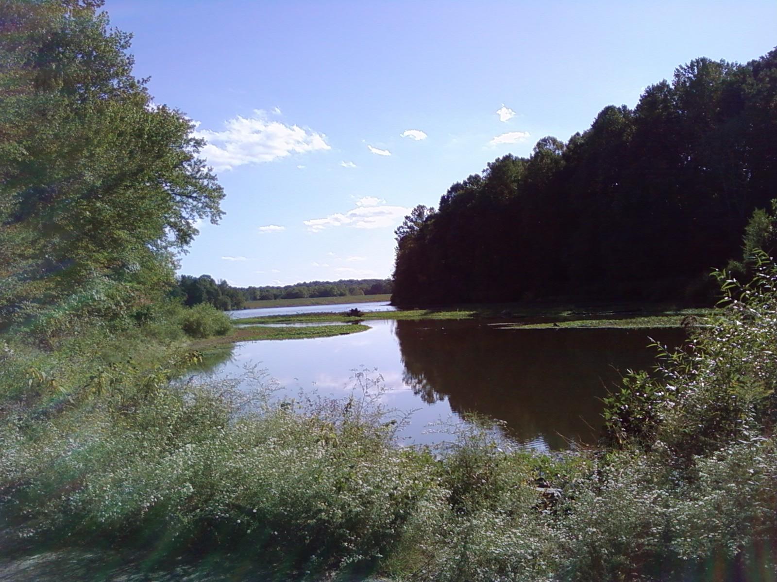 Royal Lake 029