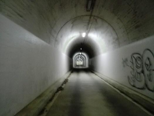 犬鳴 トンネル 【攻略完結編】獲得標高4,675mの『七葛』。七方から葛城山を攻めるクレイジーチャレンジ。