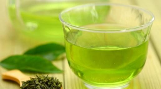 緑茶 カテキン 体脂肪 効果