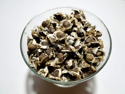 Moringa Seeds with shell