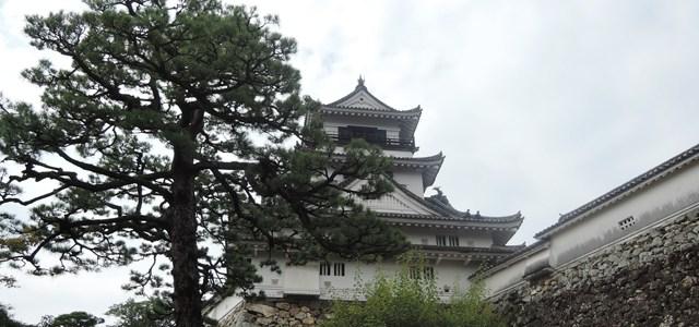 高知県へ(その2)