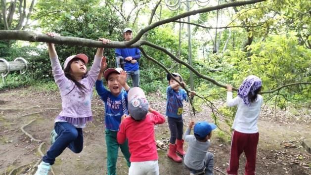 【隠岐諸島・お山の教室】2022年度 保育スタッフ募集